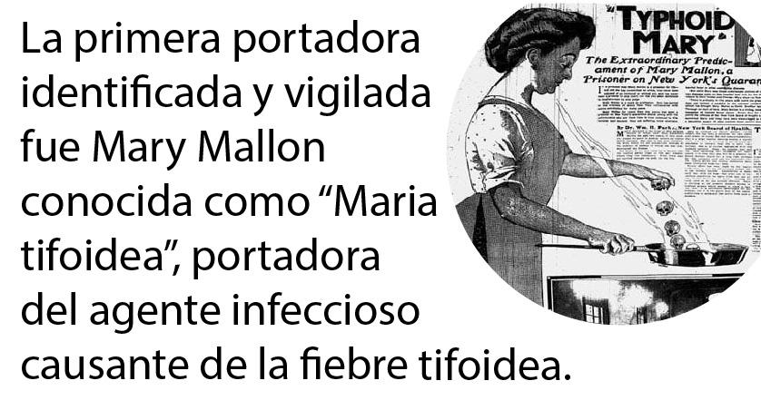 María Tifoidea